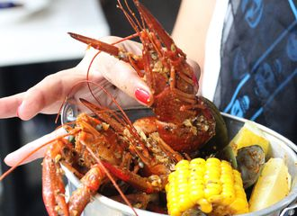 Awalnya Kuliner yang Merakyat, Tapi Kenapa Sekarang Lobster Jadi Kuliner Mewah?