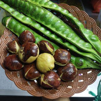 Foto Makanan di Mbah Gemblung