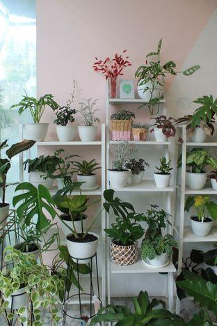 Foto 1 - Interior di Living with LOF Plants & Kitchen oleh Prido ZH