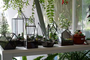 Foto 13 - Interior di Living with LOF Plants & Kitchen oleh Deasy Lim