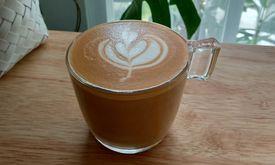 Dotto Coffee
