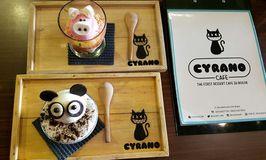 Cyrano Cafe