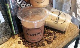 Kopiini