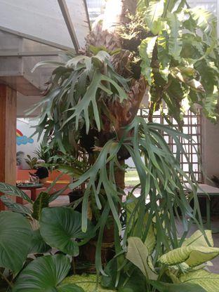 Foto 3 - Interior di Mumukuru oleh Ingin Kurus
