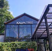 Foto di Kalpa Tree