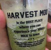 Foto di Harvest Moo