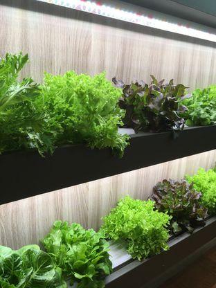 Foto review Harmony Salad Bar oleh Prido ZH 3