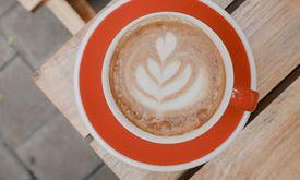 Platon Coffee