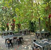 Foto Suasananya nyaman di Grand Garden Cafe & Resto
