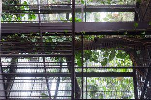 Foto 15 - Interior di Kluwih oleh Deasy Lim