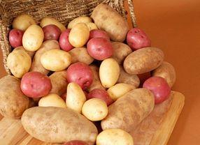 5 Jenis Kentang yang Bisa Diolah Menjadi Hidangan Lezat