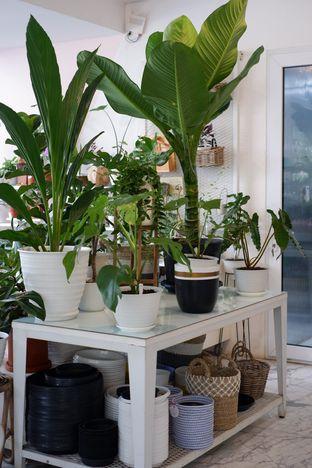 Foto 18 - Interior di Living with LOF Plants & Kitchen oleh Deasy Lim