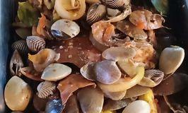 Seafood Kiloan Jeletot
