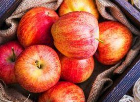 Ingin Hilangkan Lemak di Perut? Konsumsi Saja Buah-buahan Ini!