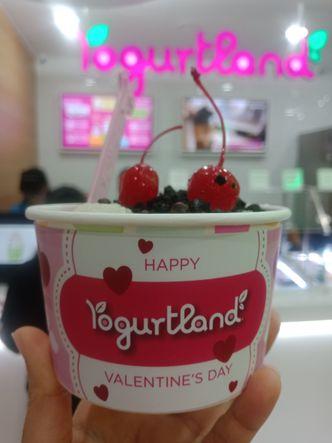 Foto Makanan di Yogurtland