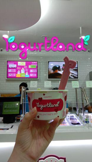 Foto 1 - Makanan di Yogurtland oleh Jessika Natalia