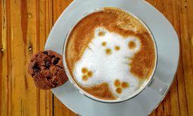 Loko Cafe