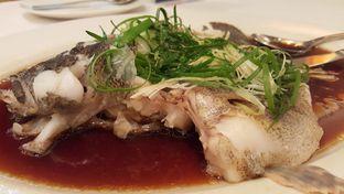 Foto 1 - Makanan(Ikan malas tim saos hongkong) di Teo Chew Palace oleh Vising Lie