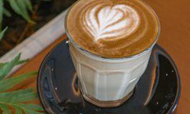Scandinavian Coffee Shop