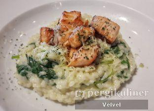 Foto - Makanan(Salmon Risotto) di Pancious oleh Velvel