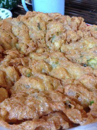 Foto 7 - Makanan(Telur Dadar Gaek) di Warung Tuman oleh awakmutukangmakan