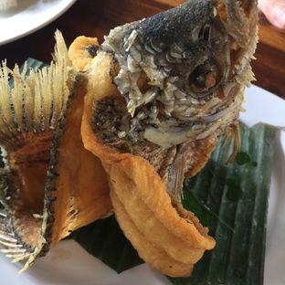 Foto 2 - Makanan di Gubug Makan Mang Engking oleh stphntiya