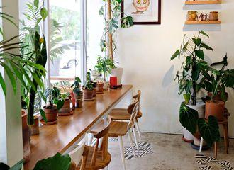 7 Cafe di Jakarta Selatan yang Bagus Untuk Foto