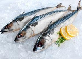 Sering Dijadikan Makanan Kaleng, Apa Bedanya Ikan Sarden dan Makarel?
