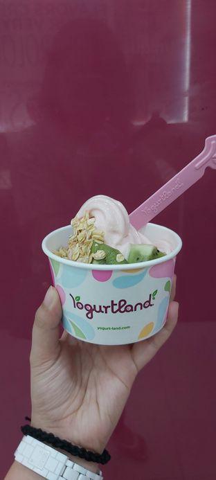 Foto 3 - Makanan di Yogurtland oleh tasya laper