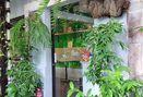 Foto Interior di Hutan Hujan
