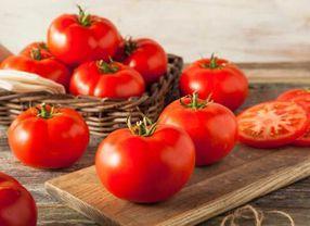 Fakta Unik Tomat yang Awalnya Sempat Ditakuti Karena Dianggap Beracun