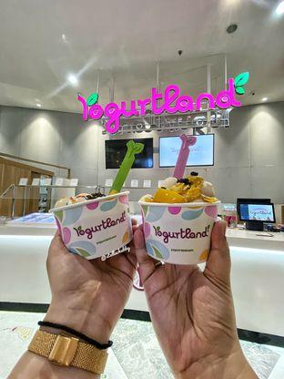 Foto review Yogurtland oleh Stellachubby  1