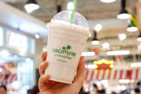 Foto Coco Tree