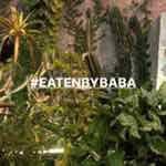 Foto Profil eatenbybaba