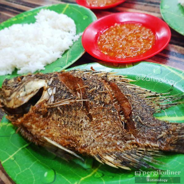 Makan Ikan Nila Murah Di Kelapa Gading Review Eatimology Rafika