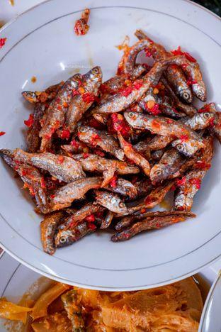 Foto 7 - Makanan di Trio Masakan Padang oleh Indra Mulia