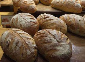 Asal Usul: Sejarah Roti yang Perlu Kamu Ketahui!