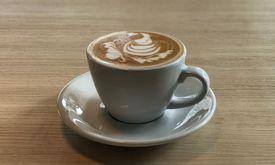 Bake and Artisan Coffee & Co