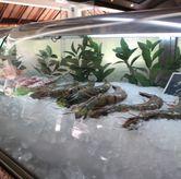 Foto di Seafood Terrace - Grand Hyatt
