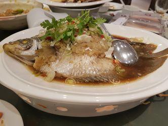 Foto Makanan di Bima Chinese Cuisine