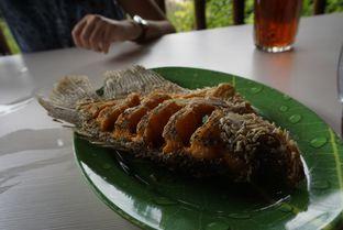 Foto 2 - Makanan di Gubug Makan Mang Engking oleh Elvira Sutanto