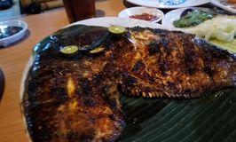Saung Rawa Lele