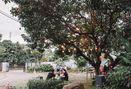 Foto Eksterior di Bruno Cafe In The Park