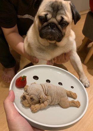 Foto 1 - Makanan di Boogie Doggie Pet Cafe oleh Riani Rin