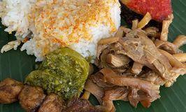 Rumah Makan Padang Vegetarian VG 70