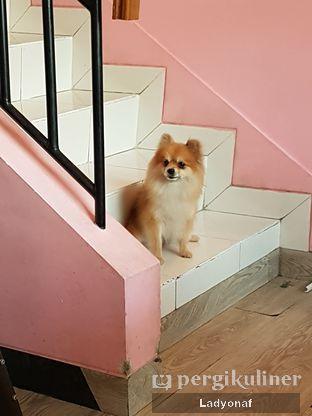 Foto 6 - Interior di Paws & Tails Dog Cafe oleh Ladyonaf @placetogoandeat