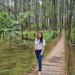 Foto Profil JC Wen