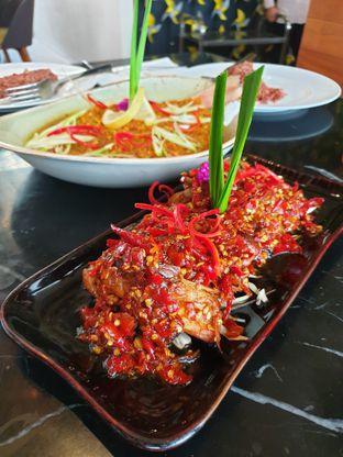 Foto 3 - Makanan di Kila Kila by Akasya oleh Pengembara Rasa