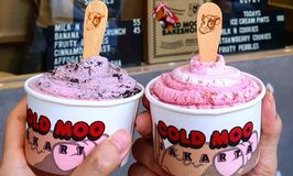 Cold Moo