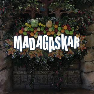 Foto review Madagaskar oleh Yulia Amanda 11